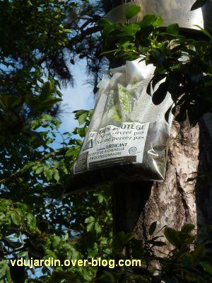 Tours, le jardin des plantes, 11, un piège à chenilles processionaires