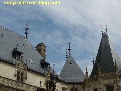 Château de Chaumont-sur-Loire, 2011, des gargouilles, 9, toits et paratonnerres