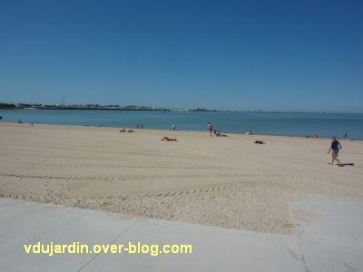 Défi photo, du bois, La Rochelle, 5, la plage