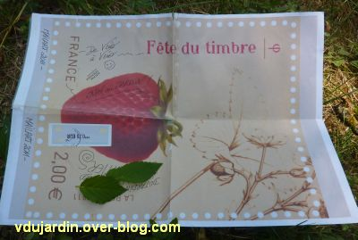 Art postal de Véro bis, juin 2011, 3, l'ensemble avec une grosse fraise