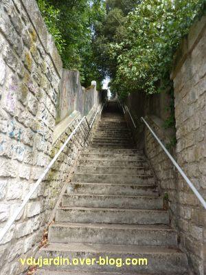 Poitiers, escaliers de la grotte des druides, 2, deuxième volée dans le sens montée
