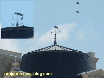 Poitiers, des girouettes, 09, la girouette sur la BNP place d'armes (ancien cercle)