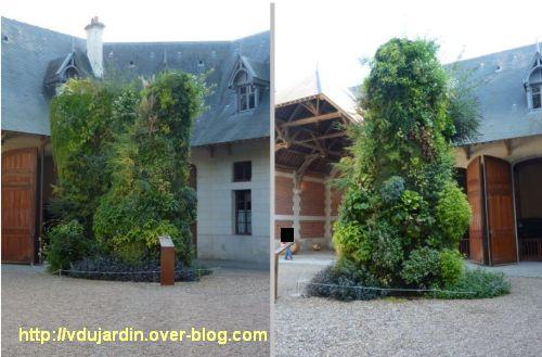 Chaumont-sur-Loire, festival des jardins 2011, mur végétal des écuries en automne (30 septembre)