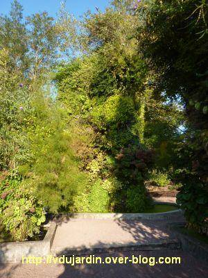 Chaumont-sur-Loire, festival des jardins 2011, mur végétal 2 en automne (30 septembre)