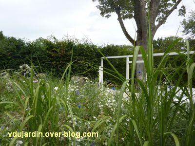 Chaumont-sur-Loire, festival 2011, le jardin n° 13, 8, prairie fleurie