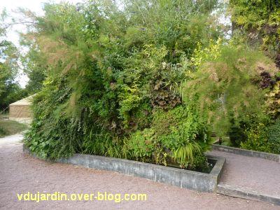 Chaumont-sur-Loire, festival 2011, mur végétal de Blanc dans le jardin expérimental, 2