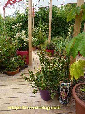 Chaumont-sur-Loire, festival 2011, le jardin 14, 3, patchwork de plantes en pot