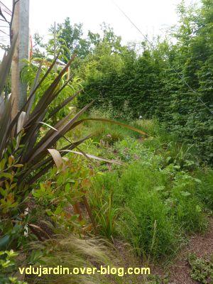 Chaumont-sur-Loire, festival 2011, le jardin 14, 6, sur les côtés
