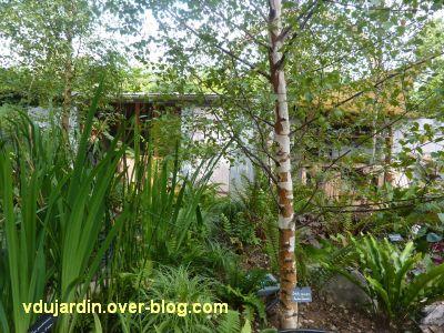 Chaumont-sur-Loire, festival 2011, le jardin 1, 4, des plantes luxuriantes