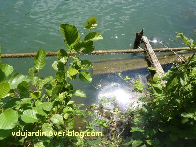 Mon jardin le 4 juin 2011, 3, le niveau du Clain mesuré aux barres pour la barque
