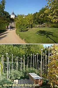 Chaumont-sur-Loire, festival des jardins 2011, deux vues du jardin 4 bis en automne (30 septembre)