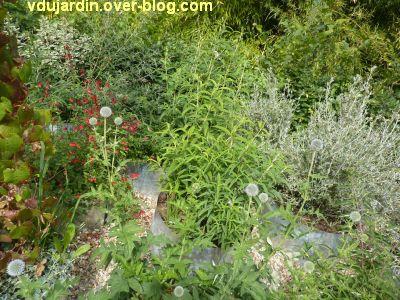 Chaumont-sur-Loire, festival 2011, le jardin 9, 4, des jardinières dans des tuyaux