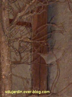 Chaumont-sur-Loire 2011, la ferme, 4, toiles d'araignées en plus sur la chaise de Verschueren
