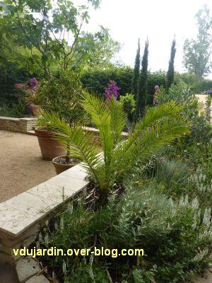 Chaumont-sur-Loire, festival 2011, le jardin 10, 5, plantes en pot et en pareterre