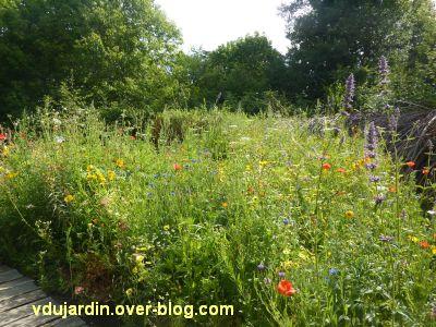 Chaumont-sur-Loire, festival 2011, le jardin 4, 5, les fleurs à l'extérieur