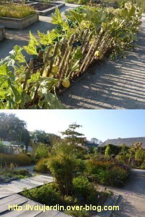 Chaumont-sur-Loire, festival des jardins 2011, le jardin expérimental en automne (30 septembre)
