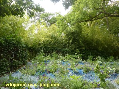 Chaumont-sur-Loire, festival 2011, le jardin 19bis, 3, des cailloux et des fleurs bleues
