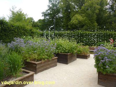 Chaumont-sur-Loire, festival 2011, le jardin 23, 1, l'entrée