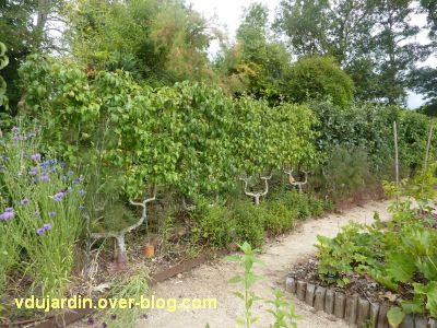Chaumont-Sur-Loire 2011, le jardin expérimental, 07, des poiriers en cordon