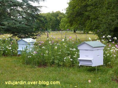Chaumont-Sur-Loire 2011, le jardin expérimental, 12, les ruches