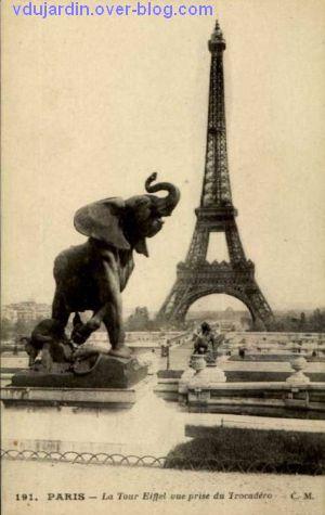 Paris, l'ancien palais du Trocadéro, carte postale ancienne, l'éléphant, 2, avec la tour Eiffel