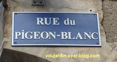 Défi pigeon vole, 01, rue du Pigeon-Blanc à Poitiers