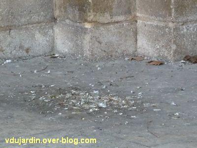 Défi pigeon vole, 04, déjections de pigeons devant le portail nord de la cathédrale