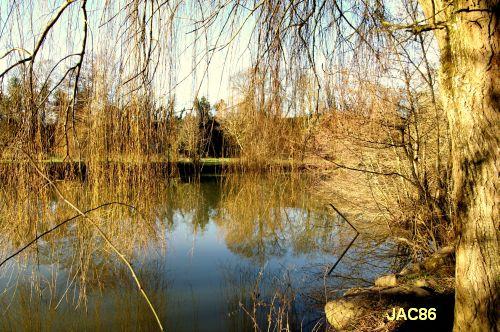 Défi photo, endroit/envers par JAC86, bords du Clain, 1