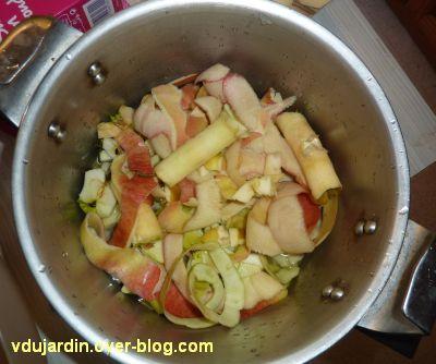 Trognons et épluchures de pommes, 1, dans la cocotte
