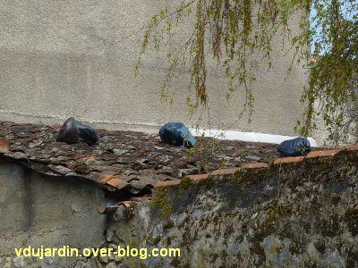 Avril 2012, dégradations des étudiants, sacs poubelles sur un toit