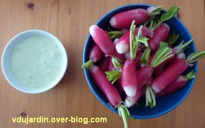 Radis avec sauce aux fanes de radis