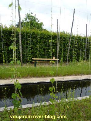 Chaumont-sur-Loire, festival des jardins 2012, jardin 24, 4, à travers le houblon