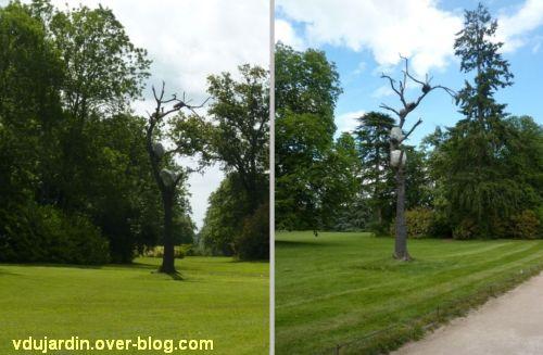 Chaumont-sur-Loire 2012, Penone, l'arbre aux cailloux