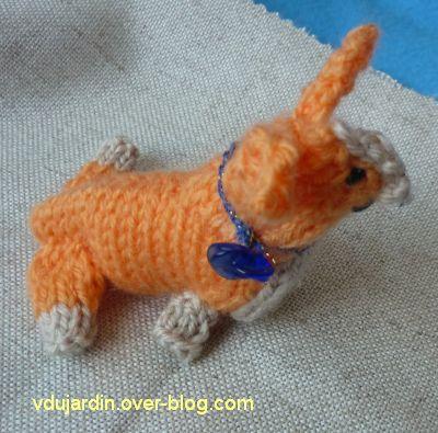 Le chien au tricot assemblé