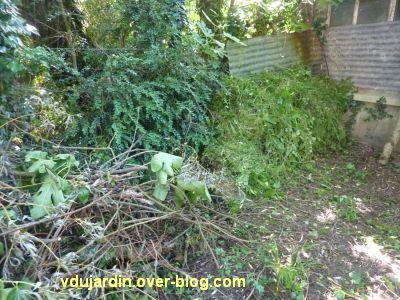 Mon jardin le 17 juin 2012, 4, le tas de branches et d'herbe