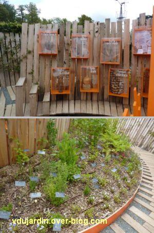 Chaumont-sur-Loire, festival des jardins 2012, jardin 21, 4, les plantes en boîte et en parterre