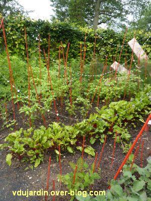 Chaumont-sur-Loire, festival des jardins 2012, jardin 20, 3, légumes et tuteurs rouges