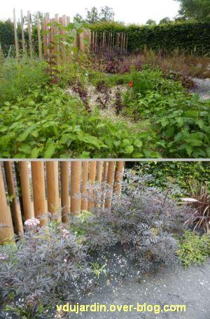 Chaumont-sur-Loire, festival des jardins 2012, jardin 20, 4, plantes variées
