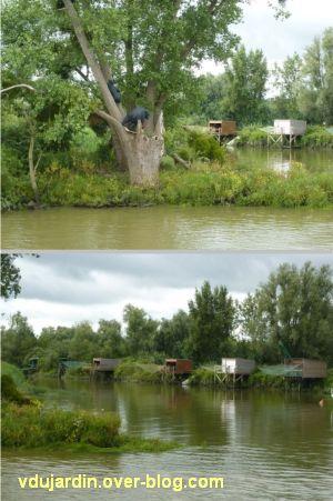 Nantes 2012, croisière, 02, les colons de Sarah Sze à Bouguenais - Port Lavigne, ours et carrelets