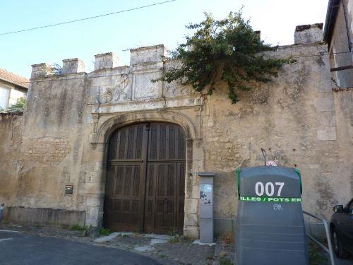 Poitiers, arbre sur un mur, rue du Doyenné