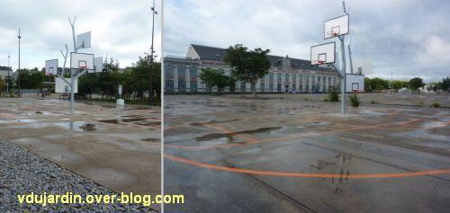 L'ouest de l'île de Nantes 2012, 13, l'arbre à basket
