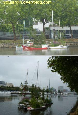 Nantes 2012, début du circuit en ville, 01, les arbres flottants