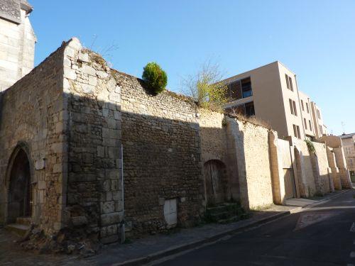 Poitiers, arbres sur un mur, rue Saint-Hilaire