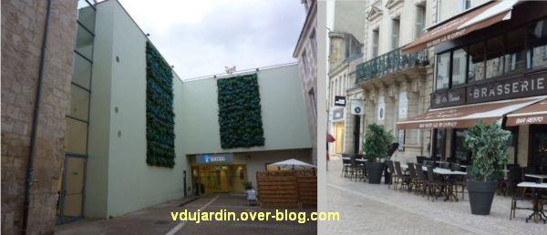 Poitiers, septembre 2012, 06, des végétaux en plastique