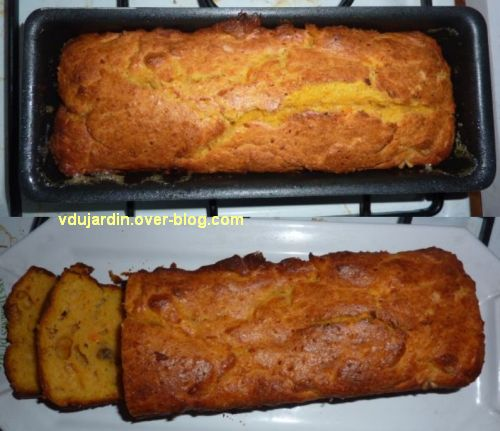 Courge butternut, 2, cake