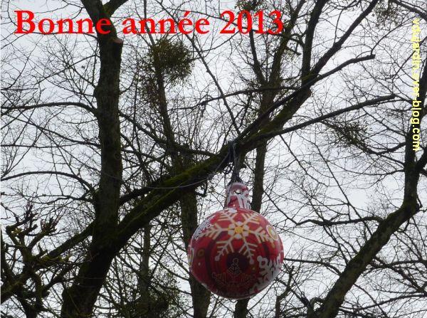 Bonne année 2013 par Véronique Dujardin