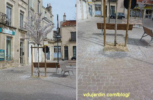 Poitiers, avril 2013, rue Magenta, arbres