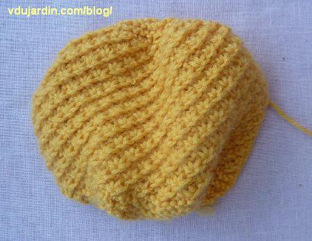 La peau de l'ananas au tricot