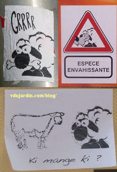 Trois variantes des moutons loups / chiens