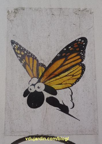 Mouton-papillon, street art à Poitiers